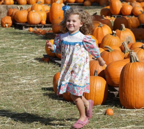 Dauphin Way Pumpkin Patch