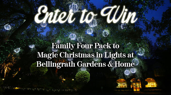 ENTER TO WIN Family Four Pack to Magic Christmas In Lights