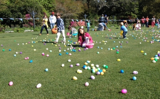 Egg Hunt Bellingrath